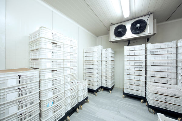 Cold Amp Freezer Room Solutions For Any Environment